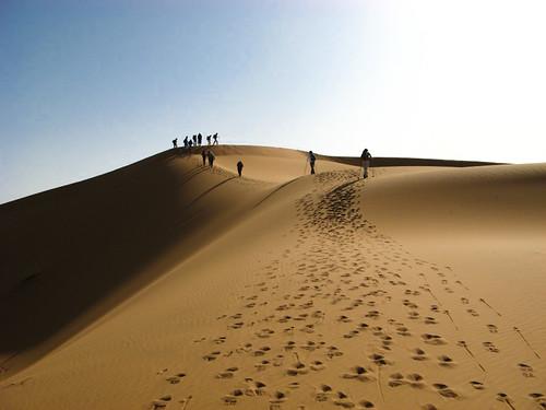 Auf den Dünen - gute Aussicht und eine kleine Brise