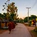 Village de Maejo, province de Chiang Mai, Thaïlande.
