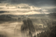 Magic morning (Petr Burkyt) Tags: mist sunrise canon landscape is perfect photographer usm ef the f4l 1dsmkii 24105mm 24105l czphoto