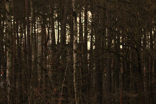 "In Soltau 2015 • <a style=""font-size:0.8em;"" href=""http://www.flickr.com/photos/69570948@N04/16341322127/"" target=""_blank"">Auf Flickr ansehen</a>"