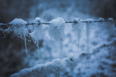 winters-day-jan-2015-21 (Nero Creative) Tags: winter snow cold ice nature outside 50mm countryside frozen cool cheshire freezing frosty 5dmkiii