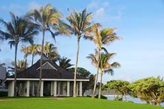Wedding Pavilion (sarowen) Tags: blue green palms hawaii oahu chapel palm palmtrees northshore palmtree turtlebay weddingpavilion turtlebayresort kahukuhawaii kahukuhi