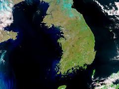 Korea in a Sea of Phytoplankton 2 (sjrankin) Tags: china aqua edited korea nasa noaa usgs eddies 250m seaofjapan yellowsea koreanpeninsula 28february2015