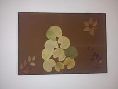 ! (amalia_mar) Tags: leaves decoration picture frame     sonyericssone10i