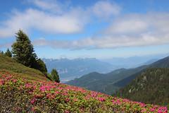 32-IMG_0014 (Yasmina Saoudi) Tags: montagne alpes rhone chamrousse belledonne