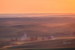 1DXK6436 (kevinle4230) Tags: ranch sunset fog landscape open outdoor dusk farm calm rollinghills wheatfield steptoebutte