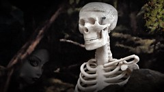 When will they ever learn (Allan Saw) Tags: skeleton skull girl femle toy face flowers moody thoughtful
