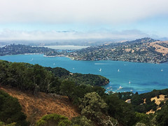 Bright Marin County bay waters (Aqua and Coral Imagery) Tags: marin bay county landscape nature sf