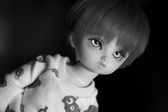 Trust (daggry_saga) Tags: sisters four doll nana bjd volks abjd balljointeddoll yosd