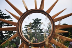 The eye sees it all, but the mind shows us what we want to see (noor.alnakib) Tags: sun tree nature green outdoor show garden rhs hampton sky london nikon