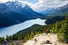 Peyto Lake (Roa!) Tags: lake louise canada ab peyto banff national park