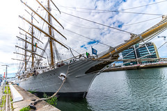 I Revisited The ARA Libertad (Q-2) Today [ I Used The Voigtlnder 15mm 4.5 Super Wide Heliar Lens]-119013 (infomatique) Tags: argentinian tallship libertad aralibertadq2 argentiniannavy williambrown guillermobrown dublin docklands augustbankholiday august foxford countymayo schoolship riosantiago cisplatinewar sony a7rm2 williammurphy infomatique zozimuz fotonique voigtlnder15mmlens voigtlnder 15mm lens