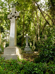 09-Highgate Cemetery East - Graves 1-1028 (md2399photos) Tags: 11aug16 dickwhittingtonscat highgatecemetery karlmarx london notesonblindness stpancras themeetingplacebypaulday