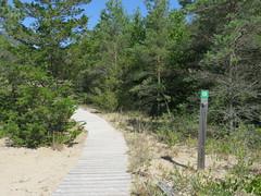 Dunes Trail (Sean_Marshall) Tags: princeedwardcounty sandbanks provincialpark park ontario trail