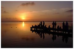 PARAISO (Paradise) (JOSE JAVIER GARCIA MARZAL) Tags: albufera elsaler valencia espaa spain paisaje landscape siluetas silhouettes puestadesol sunset patos ducks fujix100 velviavivid
