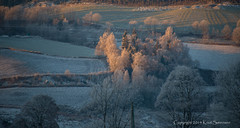 Frosty morning near Gran in norway (knutsrensen) Tags: norge natur gran oppland forskjellig frostrim opplandfylke grankommune fylker 11steder 5fotografi