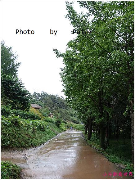 慶州良洞村 (48).JPG