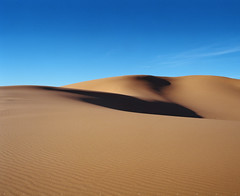 Coral (α RAINYNEPTUNUS ω) Tags: autumn arizona fall film analog mediumformat utah ut sand desert pentax fujifilm analogphotography filmphotography pentax6x7 desertrocks