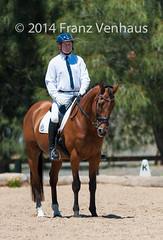 141129_Clarendon_6509.jpg (FranzVenhaus) Tags: horses sydney australia riding newsouthwales athletes aus equestrian supporters riders officials dressage spectatorsvolunteers