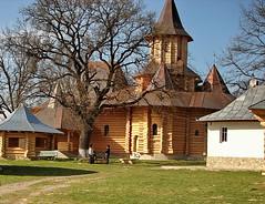 SCITUL PETRU SI PAVEL - DRAGOMIRNA 25-04 2011   1 (MIHAI TROANA) Tags: si mihai din pavel petru dragomirna lemn schit constructii schitul troana