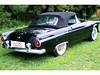 Ford Thunderbird Classic Bird 1955 Verdeck