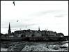 """Saint-Malo"" (Corinne DEFER - DoubleCo) Tags: travel sea blackandwhite bw mer france bird blancoynegro nature landscapes brittany noiretblanc bretagne nb ciel nuage nuages paysage paesaggi oiseau paysages saintmalo mouette rochers paisagens landschaften 法国 ileetvilaine corinnedefer updatecollection ucreleased"