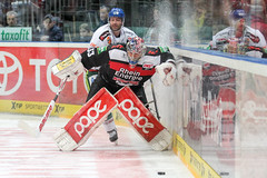"""DEL15 Kšlner Haie vs. Augsburg Panthers • <a style=""""font-size:0.8em;"""" href=""""http://www.flickr.com/photos/64442770@N03/16114919930/"""" target=""""_blank"""">View on Flickr</a>"""
