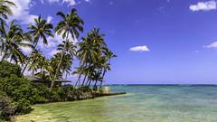 BIG.0079.09032013.CD2A4056 (PhotoCineast) Tags: usa canon eos hawaii is oahu 5d usm markiii f4l ef24105mm