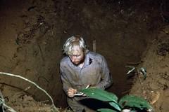 Describing profile H (KarstenThomsen1) Tags: ecuador rainforest profile soil napo sampling yasun