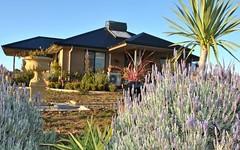 722 Amaroo Road, Borenore NSW