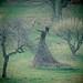 Wicker lady - Falkland Palace and Garden, Falkland, Fife, Scotland