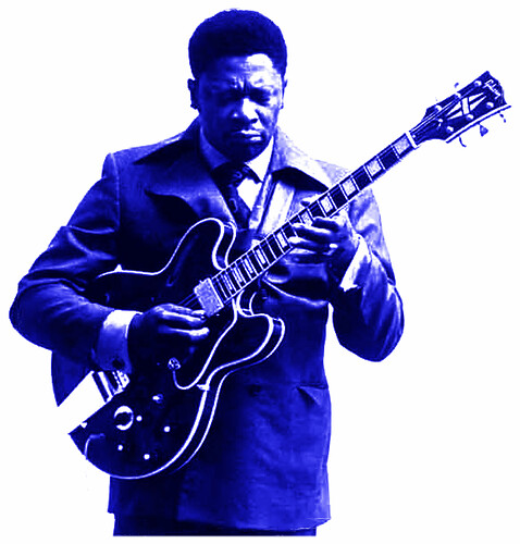 music blues bbking electricguitar 355 es355 gibson355 rileybking