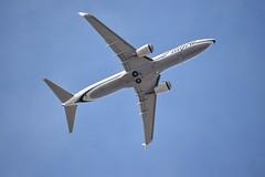 Alaska Airlines 737 (andy_66725) Tags: arizona sky usa southwest phoenix alaska harbor us airport harbour aviation flight jet az american 200 airbus boeing airlines 700 900 737 a320 crj a319 a321 b737 737800 kphx scimatar