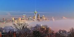 Dreamy Seattle (matthawkphoto) Tags: seattle fog rainier spaceneedle kerrypark