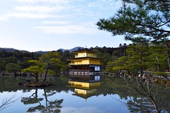 Golden Nature (matteo.butano) Tags: travel building green nature water colors yellow japan temple gold kyoto country nation like host osaka tradition 金閣寺 homestay