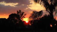 Sundown (Jim Mullhaupt) Tags: pink blue sunset red wallpaper sky orange sun color tree weather silhouette yellow clouds landscape evening nikon flickr sundown florida dusk palm tropical coolpix bradenton p510 mullhaupt jimmullhaupt