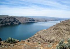 Columbia River Snapshot