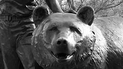 Wojtek the bear 02 (byronv2) Tags: wojtek bear statue sculpture army military worldwartwo secondworldwar wwii ww2 history allanbeattieherriot poland polish war memorial warmemorial blackandwhite blackwhite bw monochrome plaque frieze relief