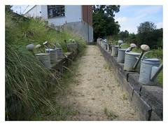 L'appui (bowb59) Tags: jardin garden appui belgique caillou qui bique