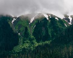 Evergreen (Pedalhead'71) Tags: mountain green fog landscape us washington unitedstates mtbaker northcascades deming