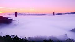 Morning Fog (davidyuweb) Tags: morning fog san francisco hawk low hill sfist luckysnapshot