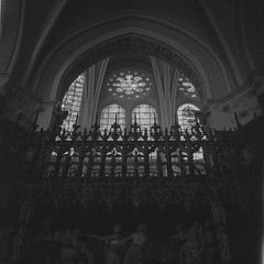 _.jpg (Pale_Cow) Tags: france rolleiflex iso3200 120film gothic bw ilford chartres paris