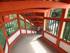 Bandai-ji route to Abuto Kannon (Stop carbon pollution) Tags: japan  honshuu  hiroshimaken