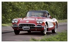 Chevrolet Corvette / 1960 (Ruud Onos) Tags: chevrolet corvette 1960 chevroletcorvette1960 chevroletcorvette am6095 nationale oldtimerdag lelystad nationaleoldtimerdaglelystad ruudonos oldtimerdaglelystad havhistorischeautomobielverenigingnederland