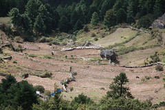 Khumbu (wronskydk) Tags: namchebazar khumbu nepal