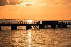 Sunset by the beach (Maria Eklind) Tags: hav ribersborg bridge water brygga3 sweden outdoor light ribban summer beach ocean malm strand sunset brygga people solnedgng tbryggan sun resund siluett silhouette skneln sverige se