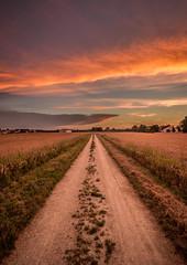 into the sunset (zwanzigzoll) Tags: canoneos600d24mm2 ww wide sunset sun light shadow field walk cloud clouds ingolstadt