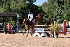 DSC_0830 (2) (ploufjf_64) Tags: paus show jumping chevaux pau 2016
