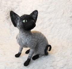 needle felted cat (willane) Tags: needlefeltedcat willane felting needlecraft