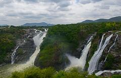 GAGANACHUKKI (SIVANASAMUDRA) WATER FALLS (GOPAN G. NAIR [ GOPS Photography ]) Tags: gops gopsorg gopangnair gopan photography bangalore karnataka bharachukki gaganachukki sivanasamudra kaveri river falls